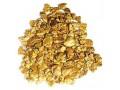 - Goud Detectors